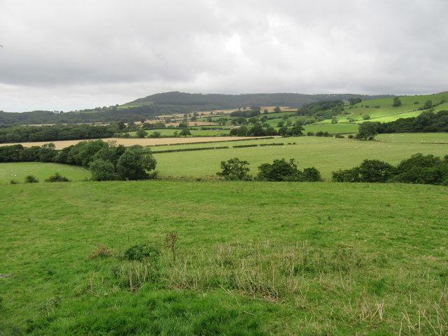 Near Battersby