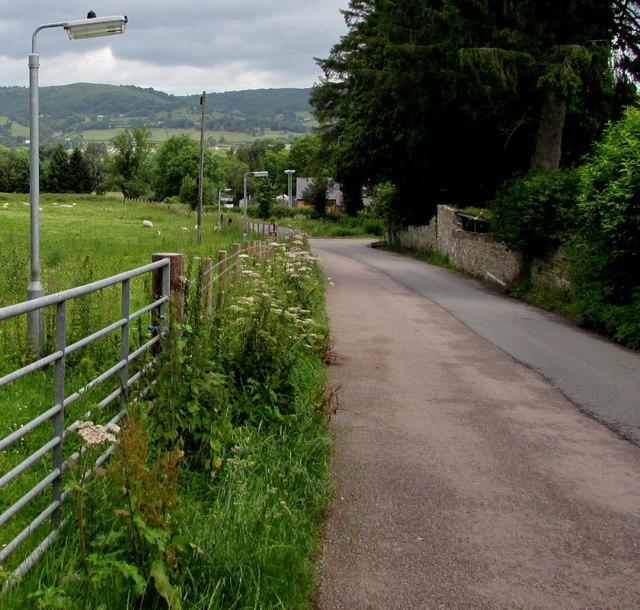 Lamppost in a Llanfoist field