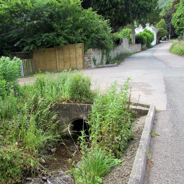 Water emerges from a Church Lane culvert, Llanfoist