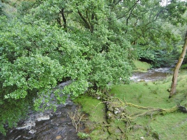 Tyn-y-ffridd, Afon Iwrch