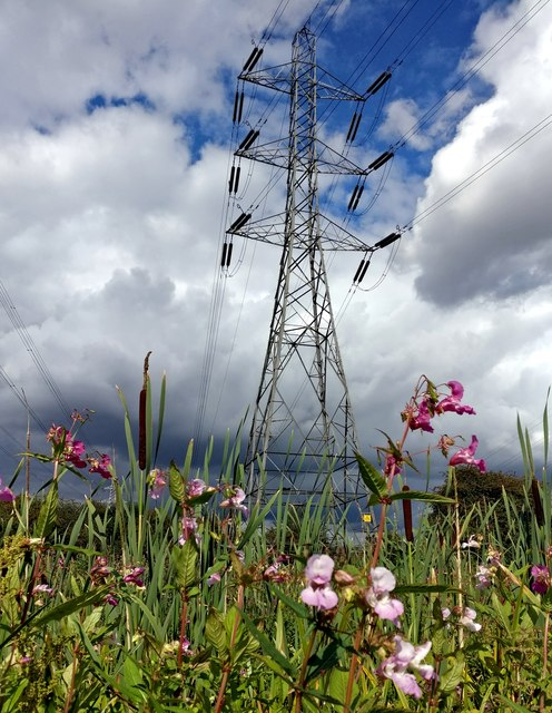 Electricity pylon next to the River Biam