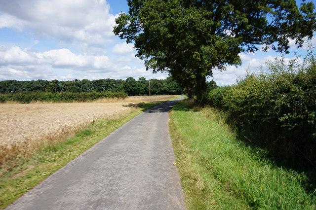 Farm road leading towards Hendwick Hall