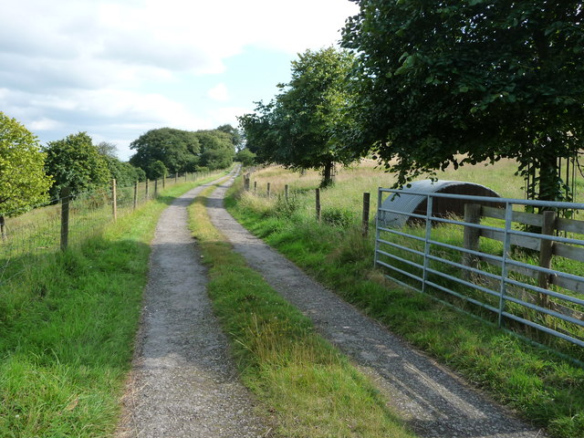 The private track from Cuckoostone House