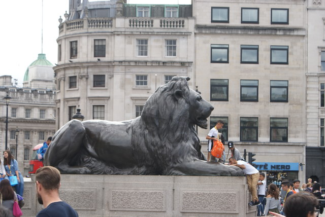View of one of the black lion statues in Trafalgar Square