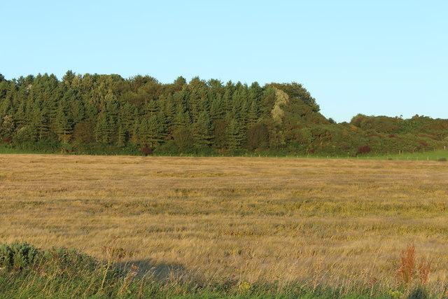 Farmland at High Balyett