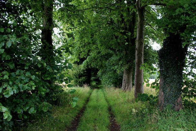 Footpath heading North East from Menethorpe Lane