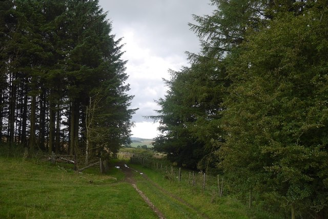 The ridgeway on Stow Hill