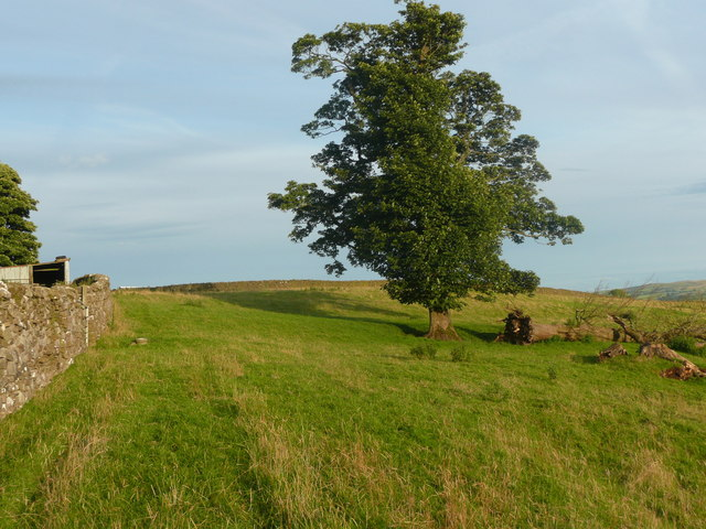 Footpath from Newby to the A65