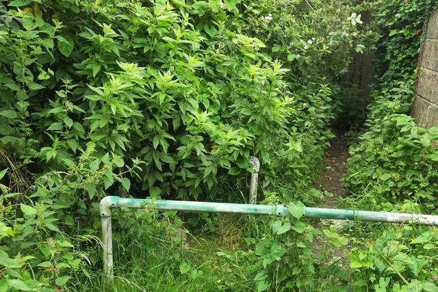 Railings on footpath, Plainmoor