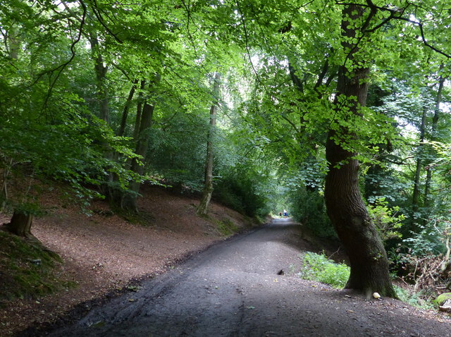Track to the car park at the Wrekin