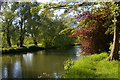 SP5107 : River Cherwell by the University Parks, Oxford by Christopher Hilton