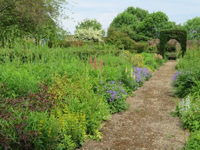 Flower border - Down Grange garden