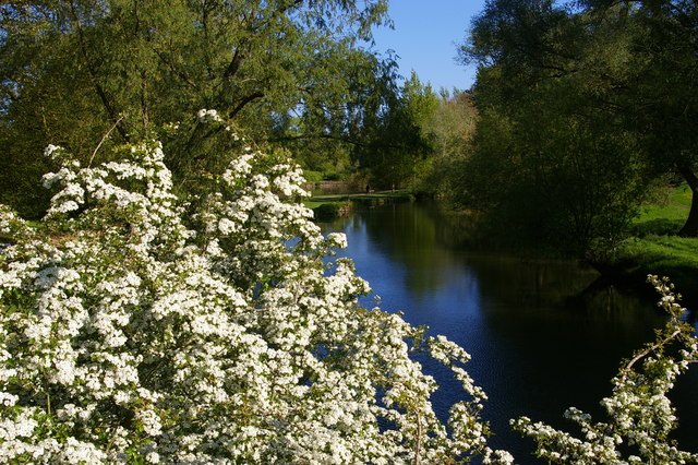 View upstream from High Bridge over the Cherwell, University Parks
