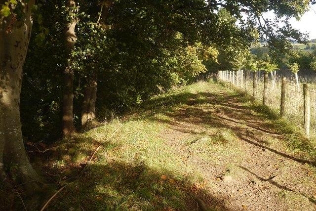 Path above Aysgarth Falls