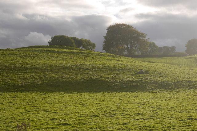 Limestone pasture, Wensleydale