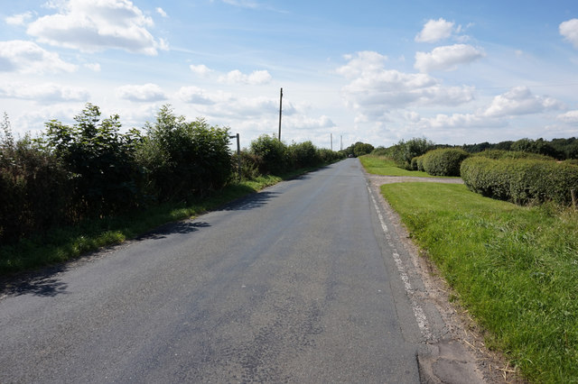 Holtby Lane