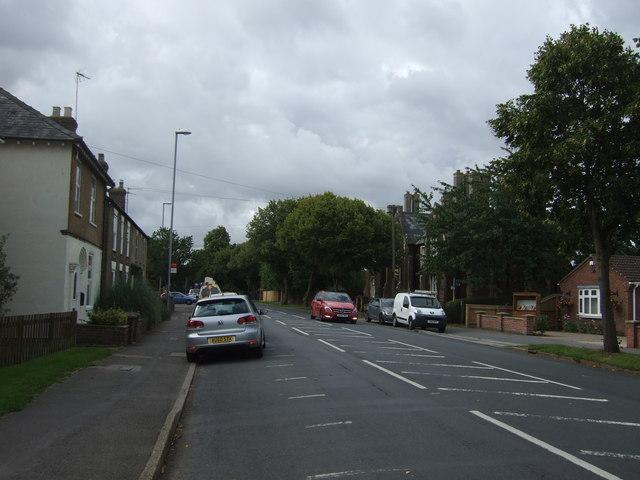 The Avenue, March