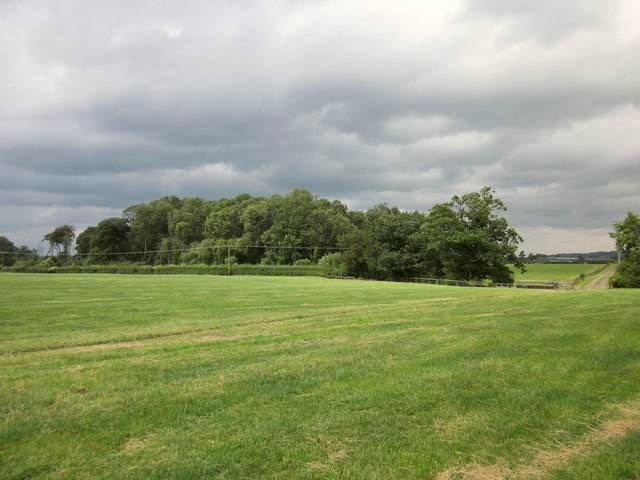 Iddinshall Rough (Moated Site)