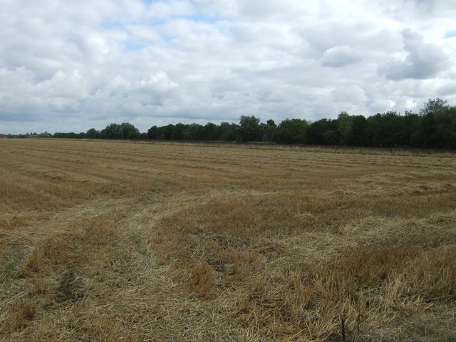 Newly harvested field off Lambs Hill Drove