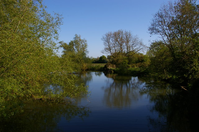 Looking up the eastern channel of the Cherwell at Parson's Pleasure