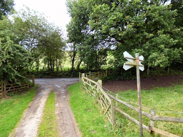 Farm track off Tickhill Lane