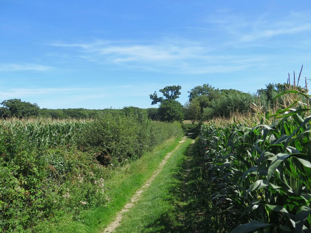 Public Bridleway from Great Upton, Isle of Wight
