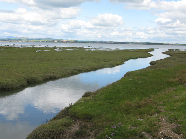 Wylock Marsh, Walney Island