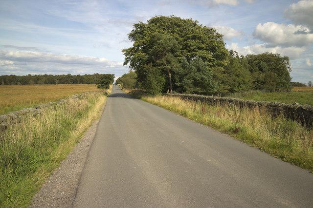 Menwith Hill Road near Carrlow Ridge Plantation