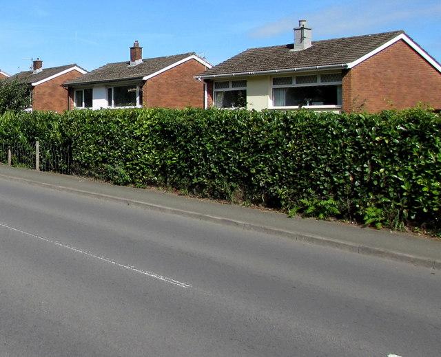 Basildene Close houses, Gilwern