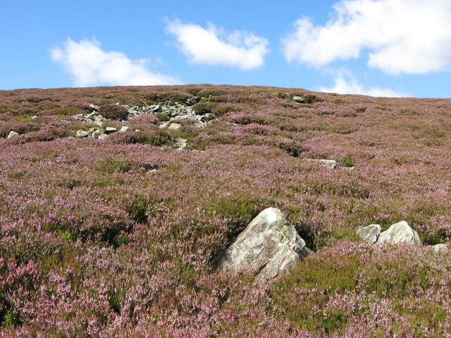 Rock outcrop on Puddingthorn Edge