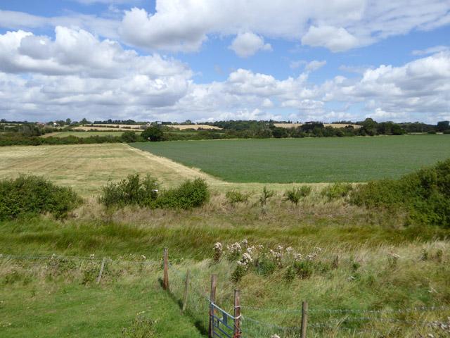 Arable land, Latchingdon parish