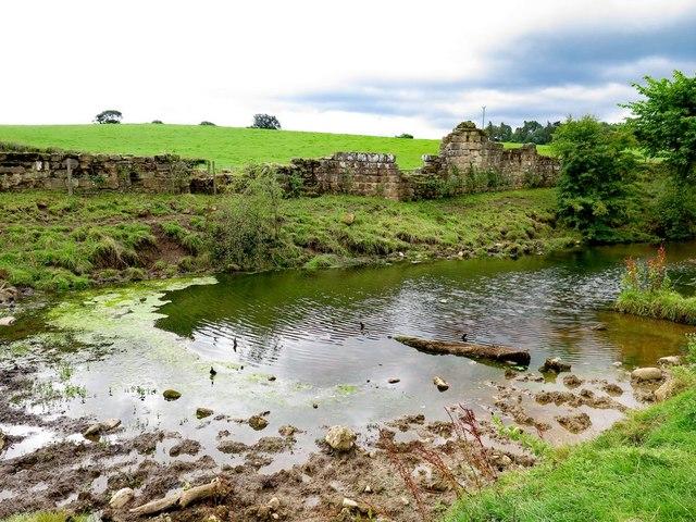Fish Pond & Abbey Wall