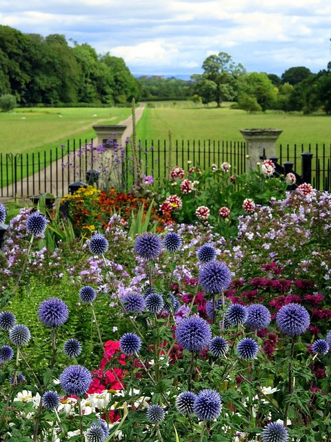 Cottage garden, Studley Lodge