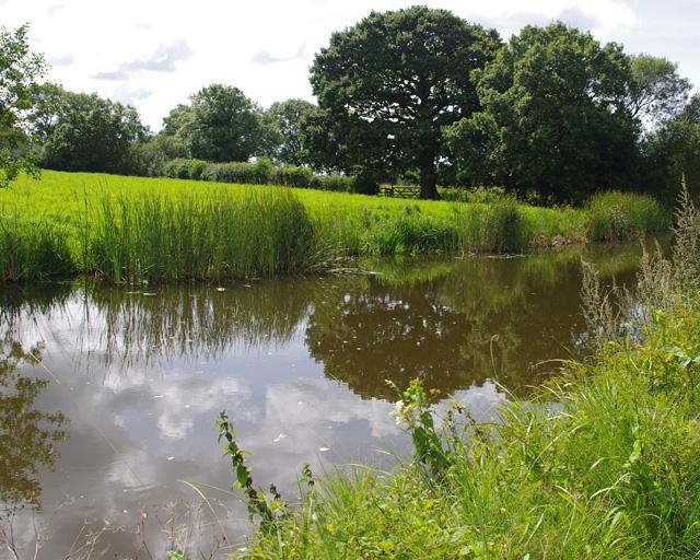 Lancaster Canal, Forton