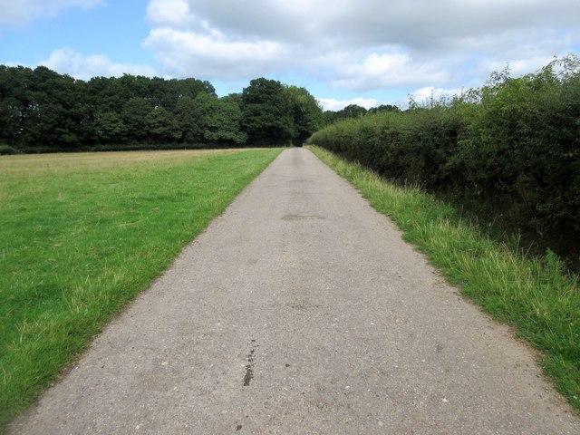 Route to Chillinghurst Plantations