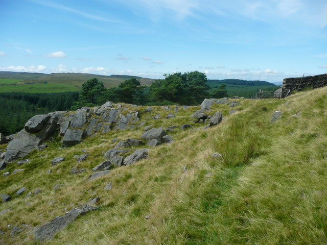 Gate and rocks at the western end of Whelp Stone Crag, Rathmell
