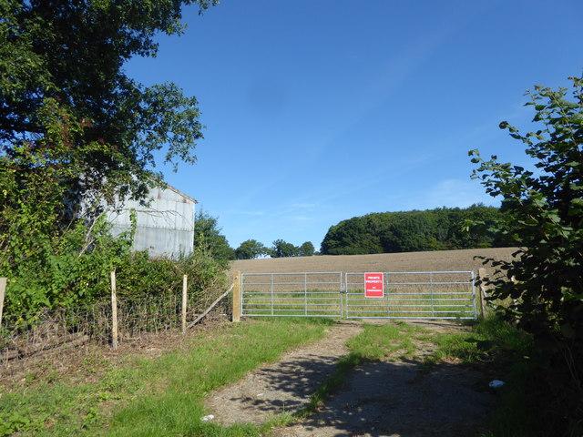 Field opposite Moat Farm