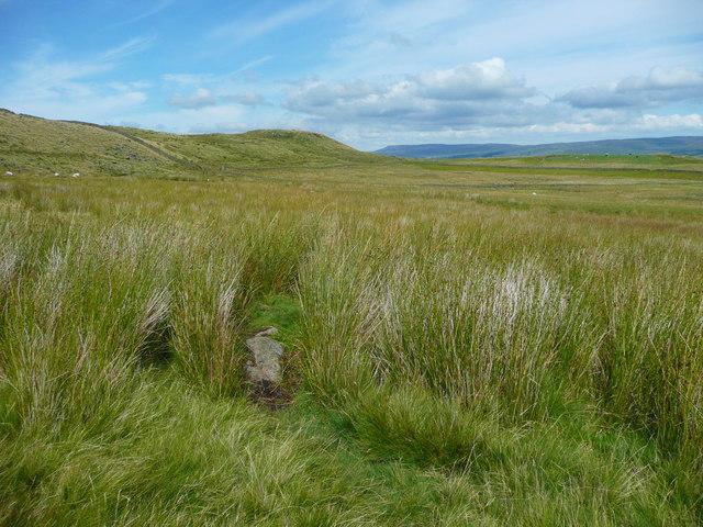 A path on Holden Moor, Rathmell