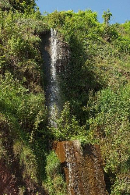 Waterfall, Maidencombe