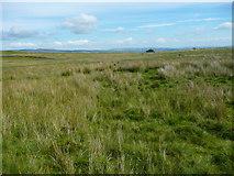 SD7659 : Holden Moor, Rathmell by Humphrey Bolton