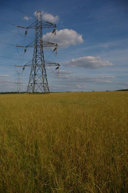 Pylon line south of Cuckoo Wood