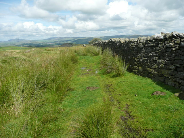 On the footpath from Holden Moor to Whelpstone Lodge, Rathmell