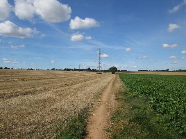Footpath towards Sprotbrough
