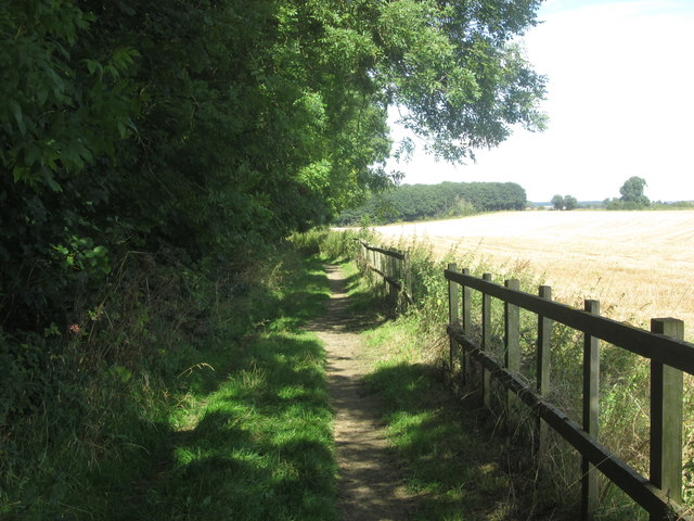 Track along the east side of Melton Wood