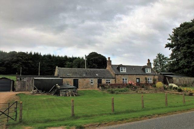 Greentree Cottage