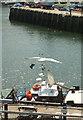 SX9256 : Brixham harbour by Derek Harper