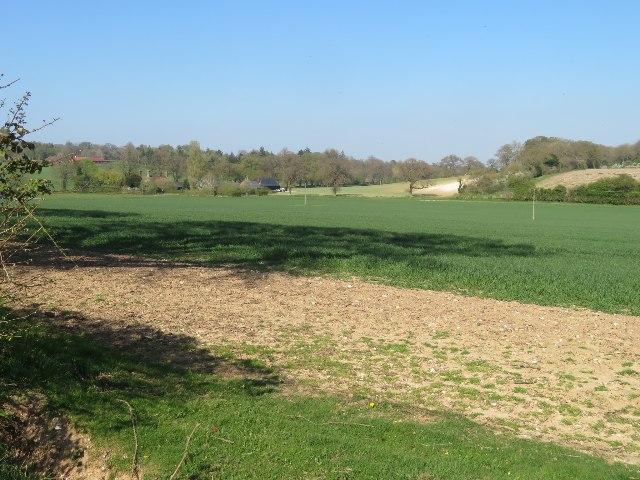 View towards Summer Down Farm