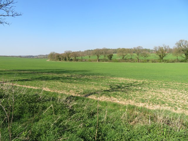 Fields by Blandy's Farm