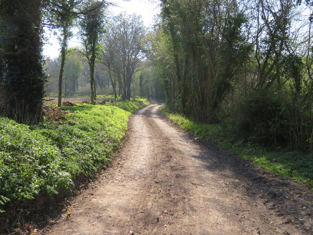 Continuation of White Lane