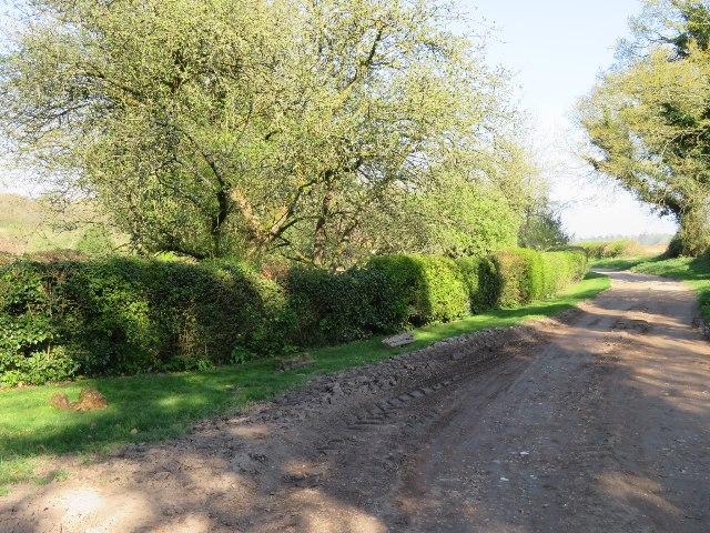 Muddy end to White Lane